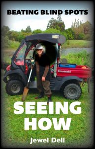 Beating Blind Spots — Seeing How